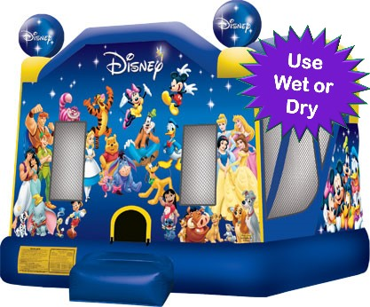 Disney Bounce House Rental for Birthday Party