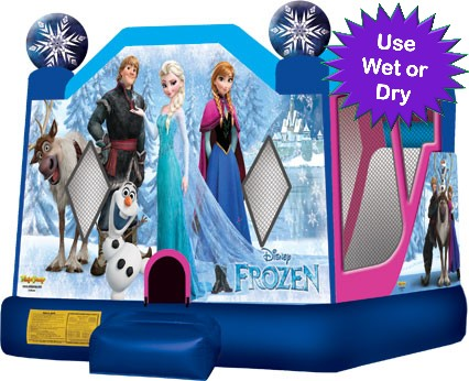 Frozen movie theme bounce house party rental - Birthday Bounce House